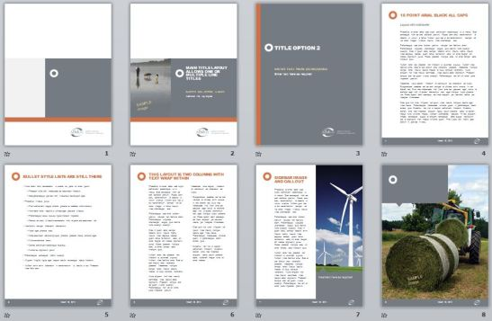 AIMco vertical PowerPoint template, sample pages
