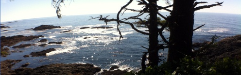 Wild Pacific Trail, Ucluelet, BC, Canada